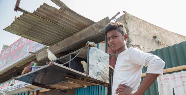 Shopar (19) taking care of his doves in Dhaka, Bangladesh. Photo: Nathalie Bertrams/GAGE