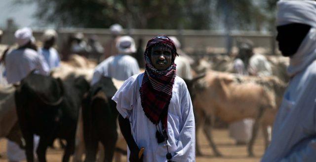 Animal trading in Forobaranga, West Darfur, Sudan. Credit Image by Albert González Farran/UNAMID - CC BY-NC-ND 2.0.